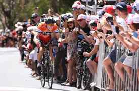 Cycling: 17th Santos Tour Down Under 2015/ Stage 5